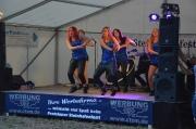 Steinhafenfest 2015_101